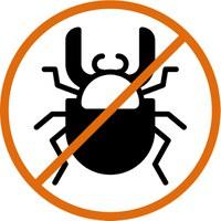 Software testing bug