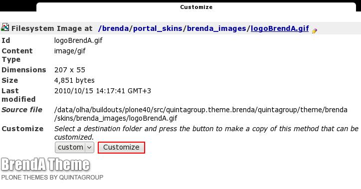 customize.png
