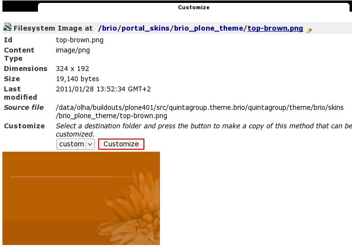 customize-top-brown.png