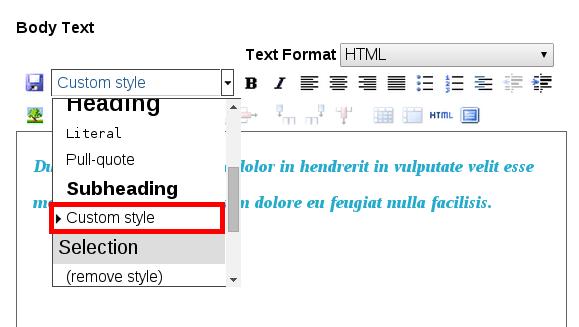 TinyMCE editor with custom styles