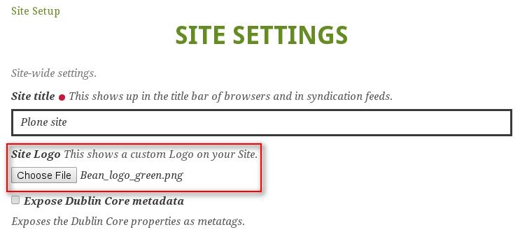 Logo site settings