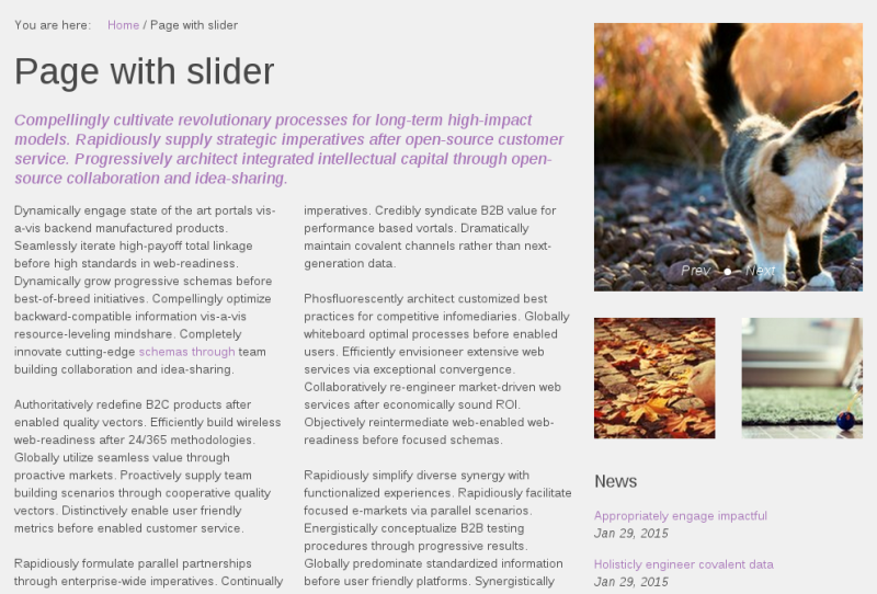 Sliced Plone theme custom slider for collection portlet
