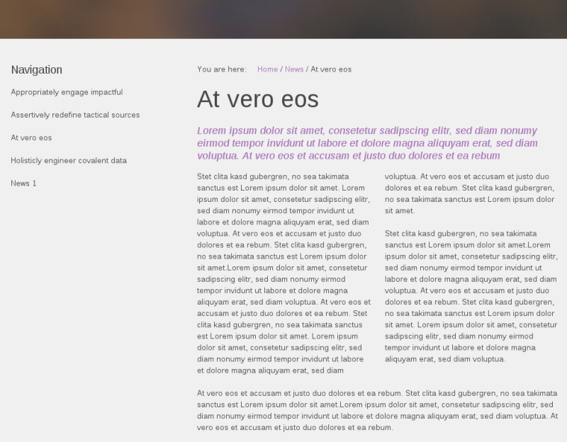 Sliced Plone Theme two-column text look