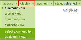 select-item